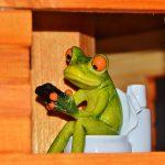 Les toilettes sèches: une solution durable et écologique