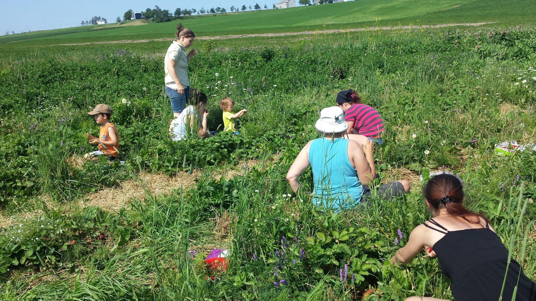 Jardiniers dans un champ