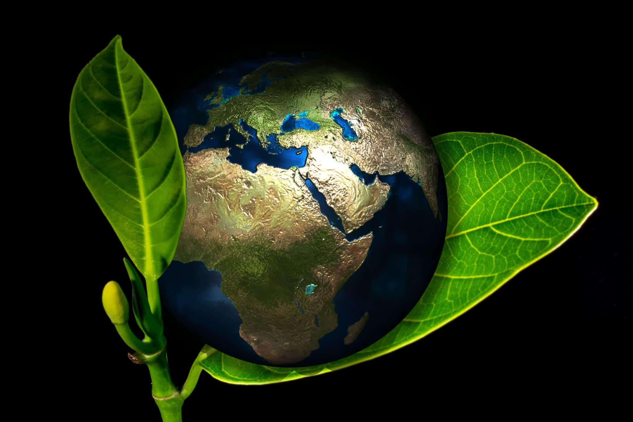 terre, planète, naissance, nouvelle