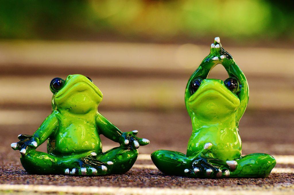 grenouilles-yoga