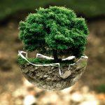 La dette écologique
