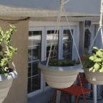 Mon petit jardin urbain